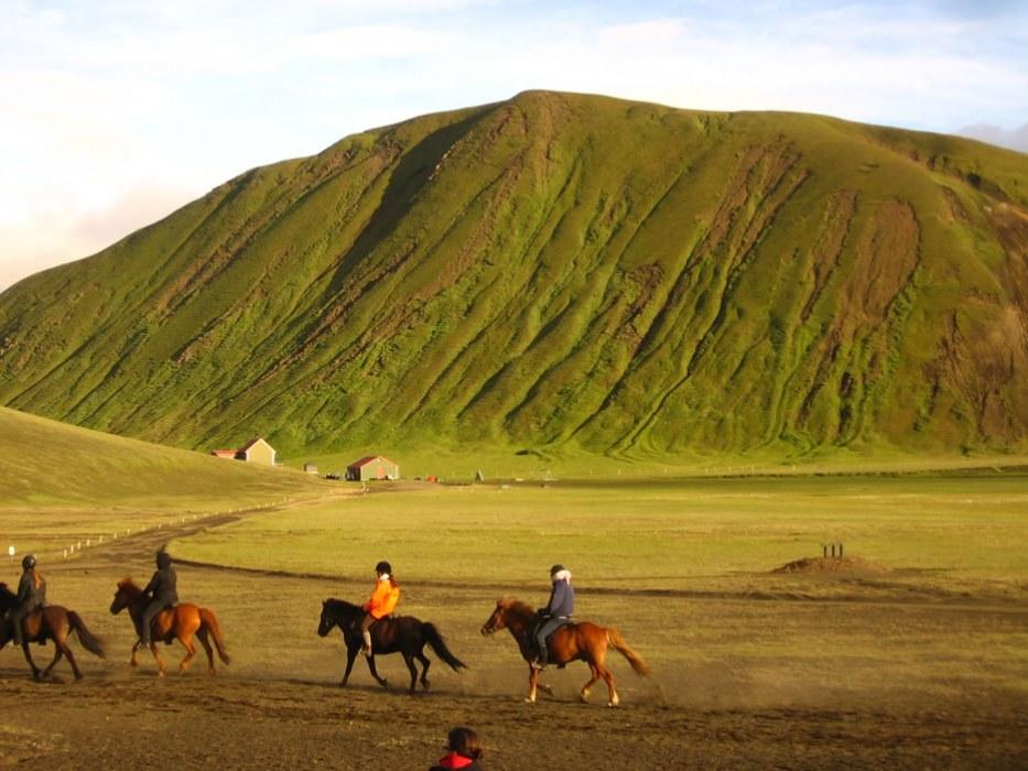 a passeggio con i cavalli islandesi