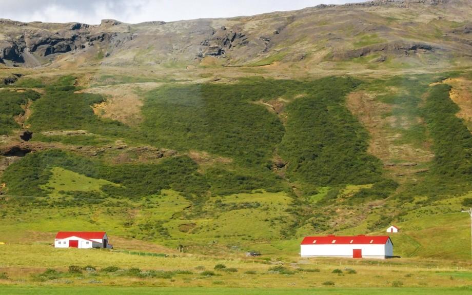 fattorie b&b islandesi