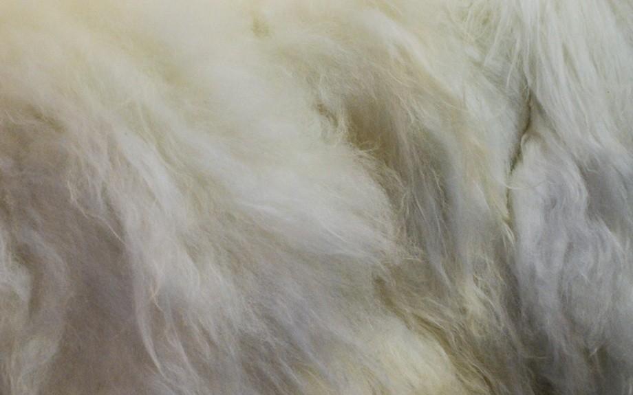 lana di pecora islandese lavorata