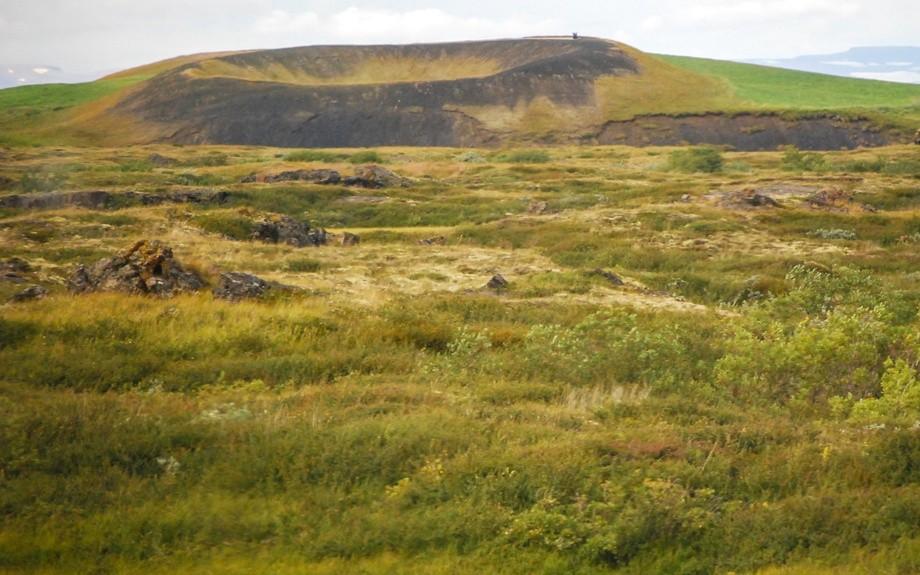 pseudo createre islandese